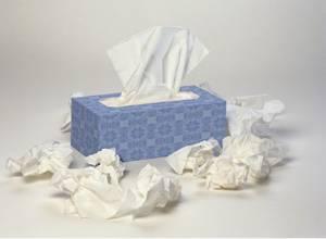 tissues