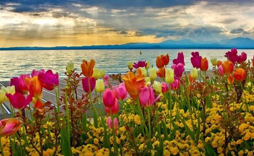 Spring Sunset At Lake Garda Desktop Background